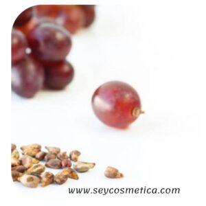 Semilla de uva